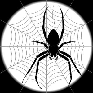 étoile d'araignée pour piéger le poisson d'argent